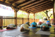 A yoga holiday group doing child's pose on an outdoor wooden deck at Villa Miela in Montenegro