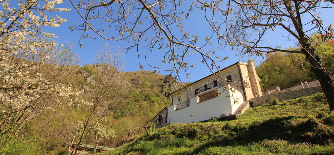 A stone villa with terrace on a grassy hillside, pictured in the Springtime, surrounded by trees and blossom with bright blue sky above, which is used as a holiday accommodation at Lake Skadar, Montenegro.